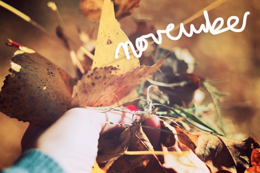 1. November 2011